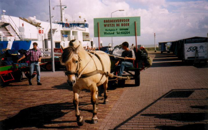 http://www.op-vlieland.nl/vervoer/wietze/aanlegsteiger3.jpg